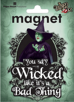 Wicked Witch 3D Magnet