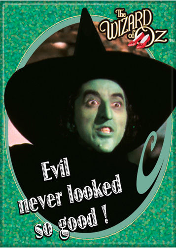 """Evil Never Looked So Good!"" Magnet"