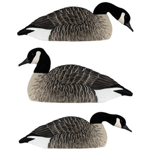 Avian X Honker Shell Decoys 6 Pk.