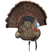 Load image into Gallery viewer, Avian X Trophy Tom Turkey Decoy
