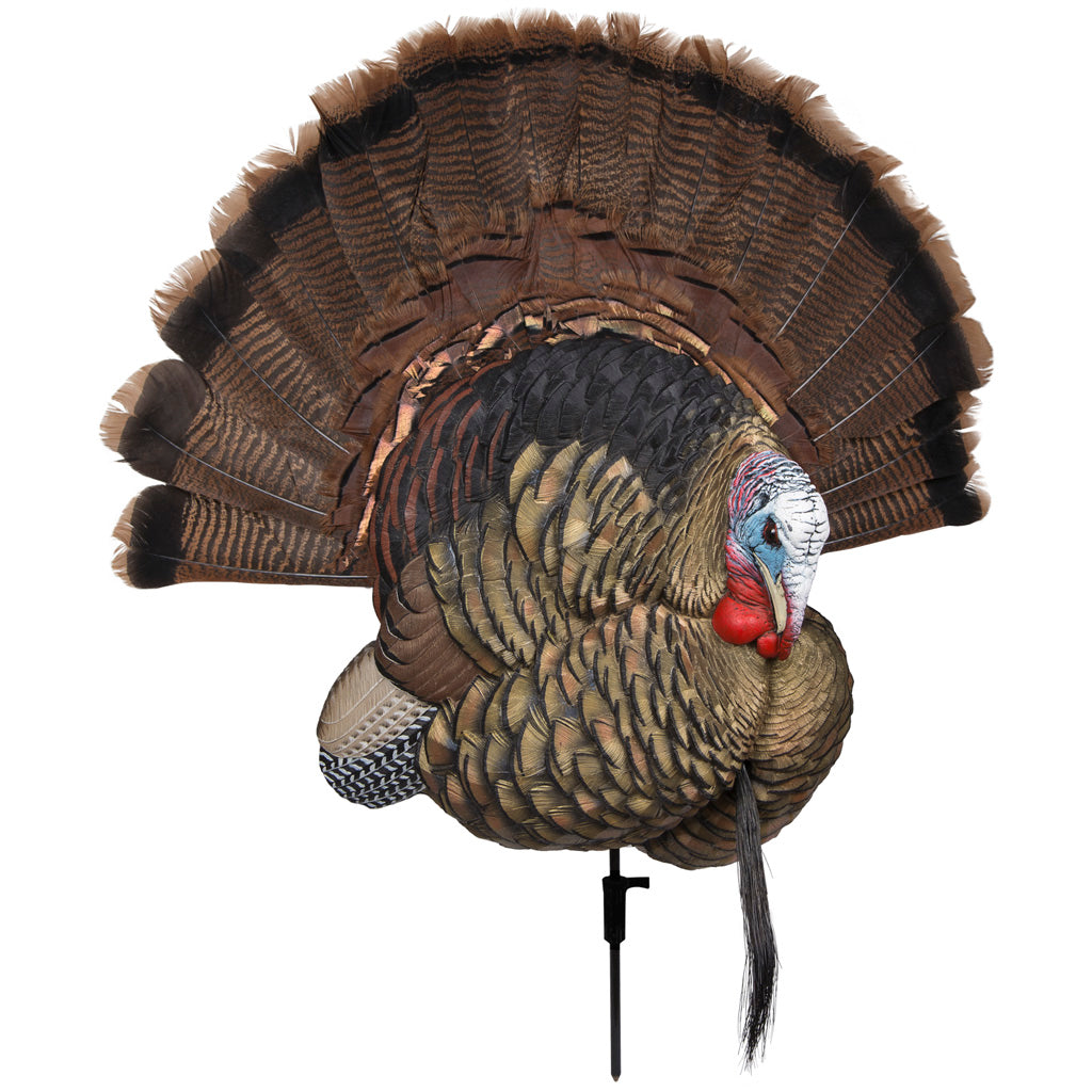 Avian X Trophy Tom Turkey Decoy