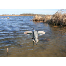 Load image into Gallery viewer, Mojo Elite Series Pintail Decoy