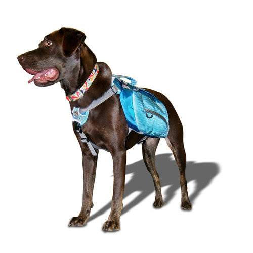 Kurgo Baxter Backpack Fresh Tracks Pet Shop