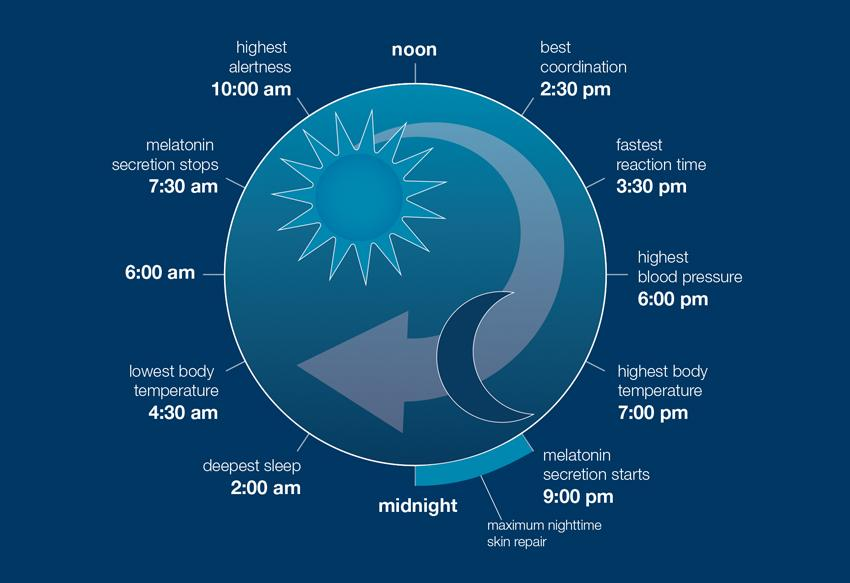 the science of sleep (and skin)