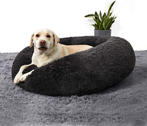 2X Dog Bed
