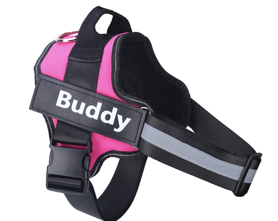 Custom Harness Reflective