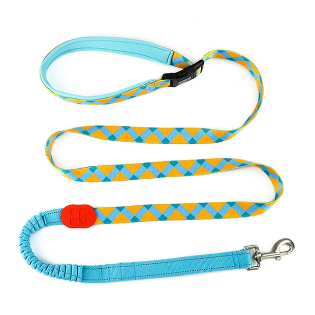 Hands Free Jerk Absorbing Extendable Leads-Leash