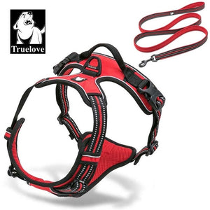 Dog Harness And Leash Set- Very Sturdy