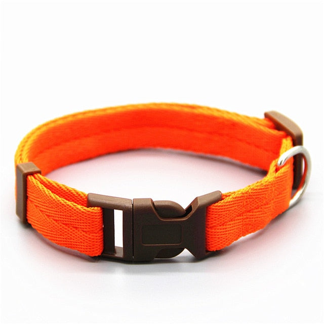 Dog collar Adjustable Nylon Strong and Durable-Can be Personalized