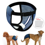 Pet Diapers Physiological Pants with Buckle