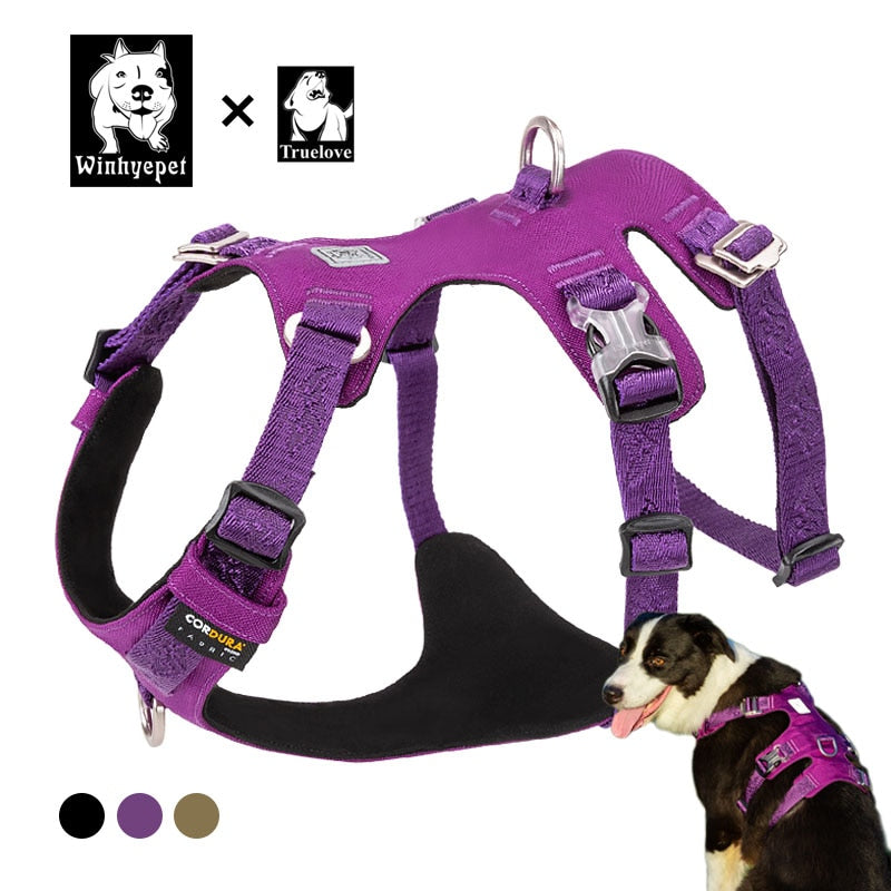 Sturdy Harness for Training Large Dogs