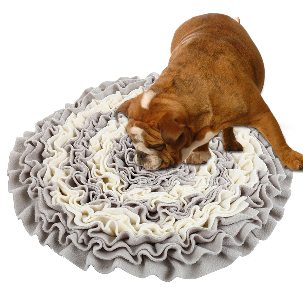 Snuffle Mat Sniffing Exercise-Advance Level