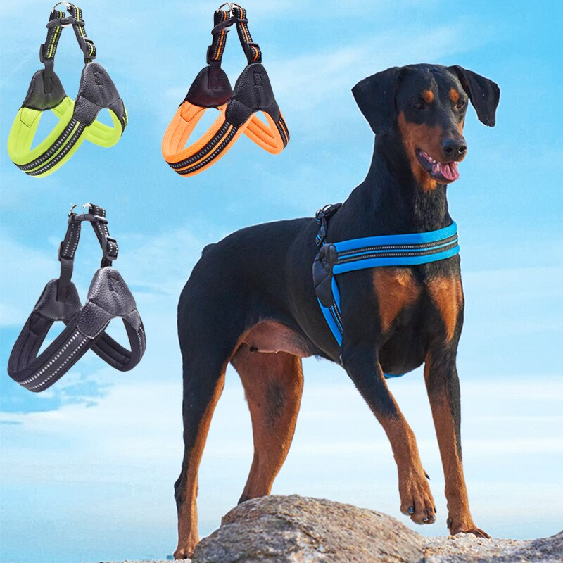 Heavy Duty Padded Dog Harnesses