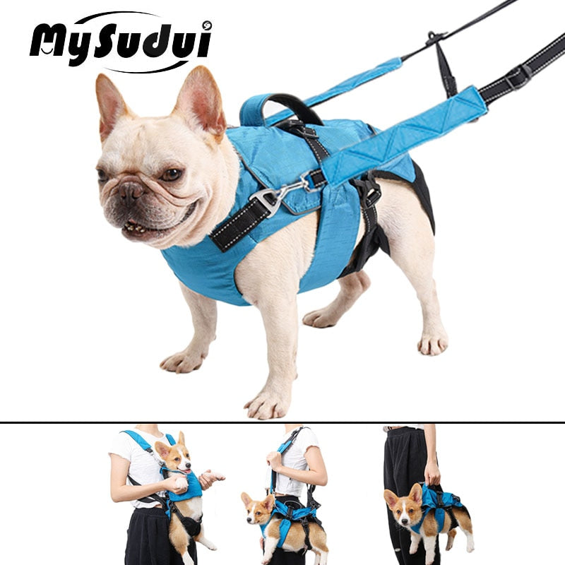 4 In 1 Pet Dog Backpack Harness And Leash