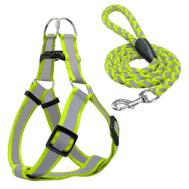 Reflective Harness Leash Set for Small-Medium Dogs
