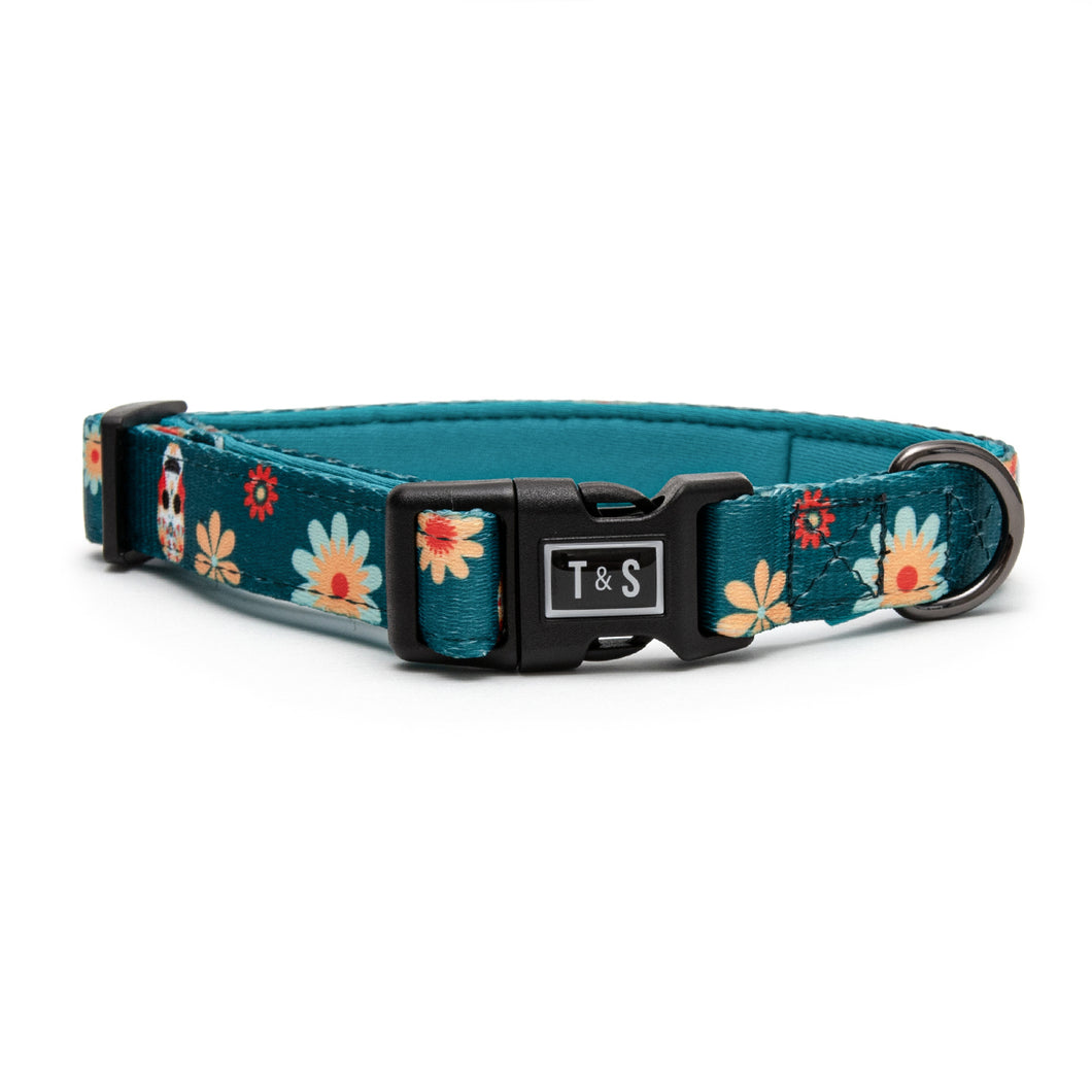 Fiesta Mexicana dog collar