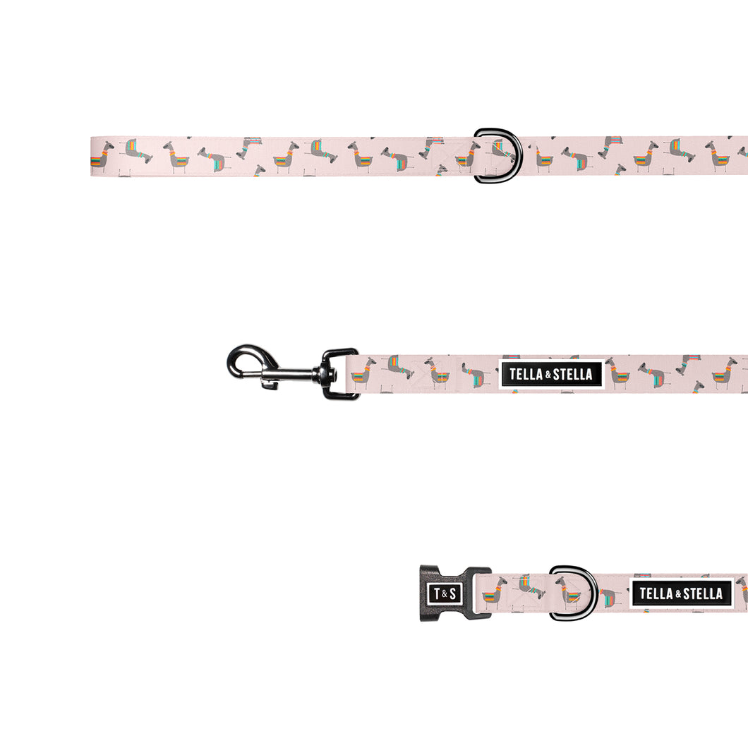 Crazy Llama Combo (collar & leash)