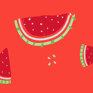 Fresh Watermelon dog leash