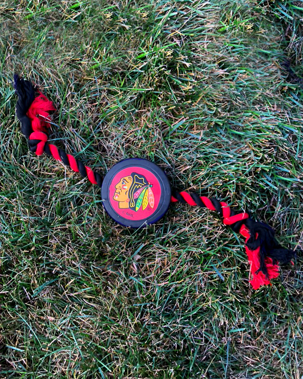 Puck Rope Pet Toy