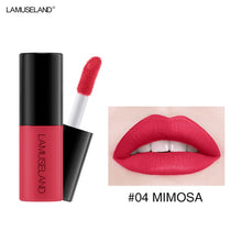 Load image into Gallery viewer, Color Matte Nude Velvet Texture Lip Gloss