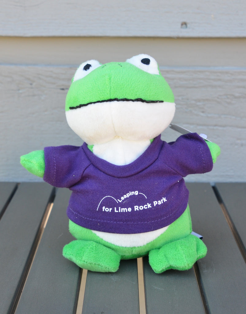 Frog, stuffed animal