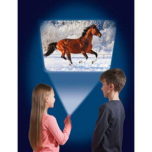 Horse Flashlight and Projector
