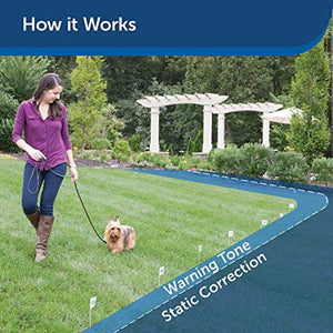 PetSafe Basic In-Ground Dog and Cat Fence – from the Parent Company of Invisible Fence Brand – Underground Electric Pet Fence