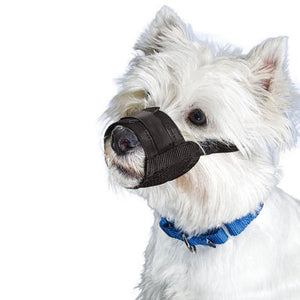 Premier Pet Muzzles Small Breed Black Dog