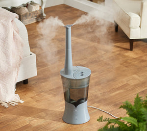 Air Innovations Clean Mist Top Fill Humidifier