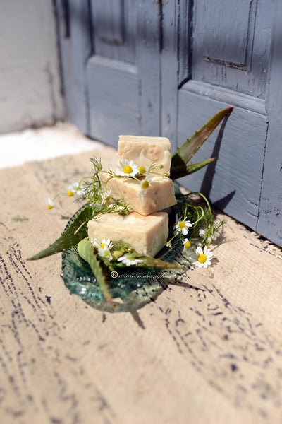 Ancient Organic & Wild Soap Collection (For Skin Repair & Soothing)