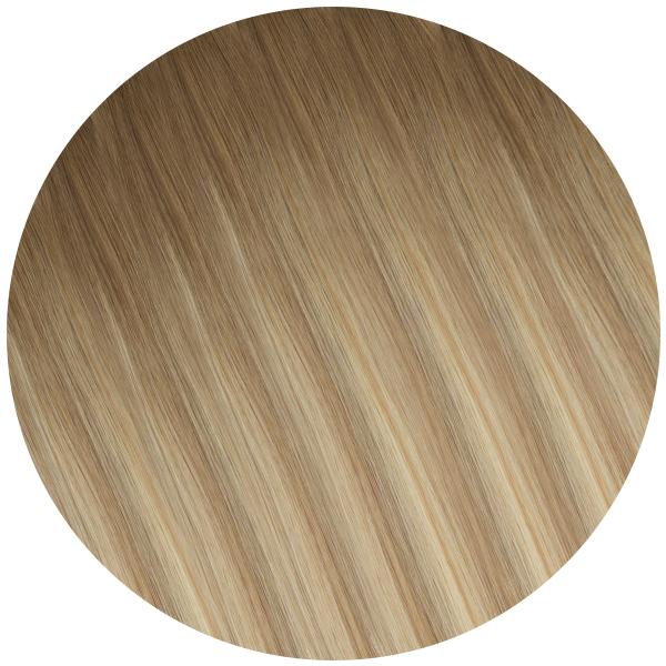 Ponytails Queue de Cheval<br> 120gm Ombré Beige - 50cm
