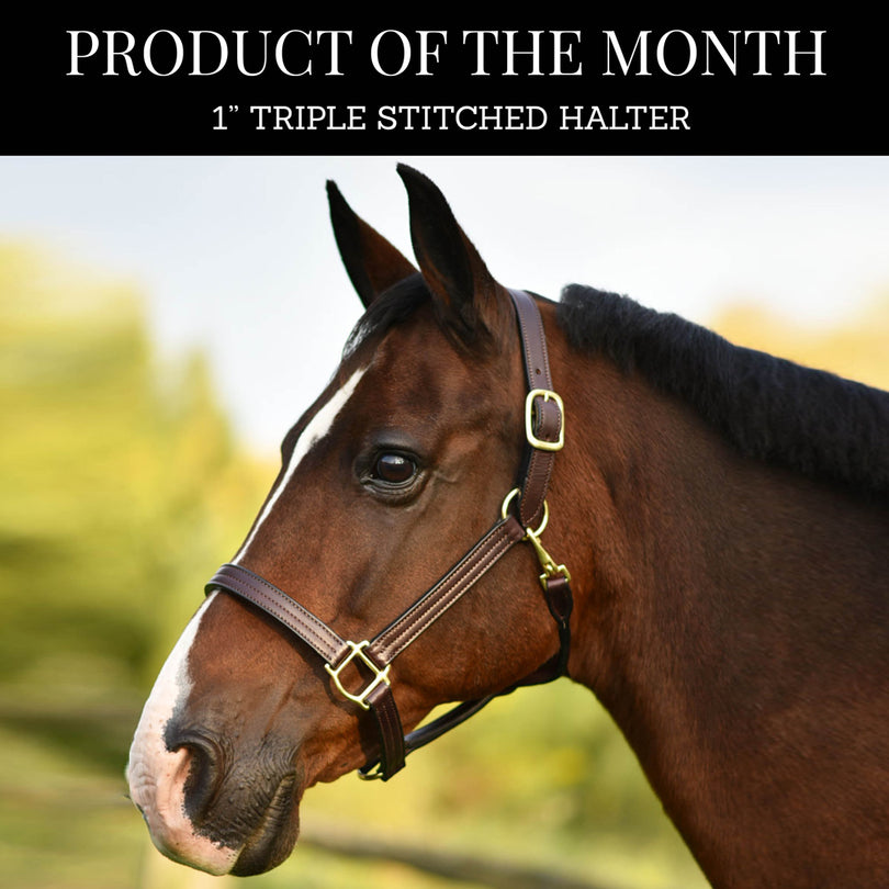 Product of The Month: The 1
