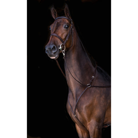 Advantage Comfort Padded Martingale