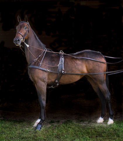 Freedman's Quick Hitch Jog Harness