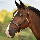 "3/4"" Double Stitched Fixed Chin Halter"