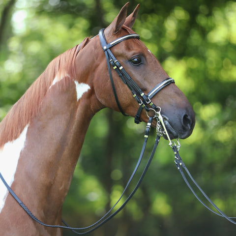 Advantage Comfort Padded Show Hack Bridle