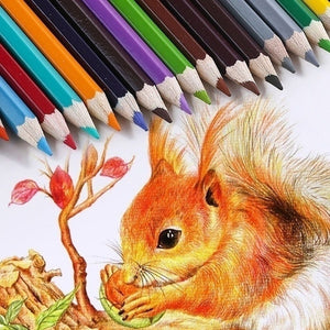 Artist Quality 72 Colors Lapices  Professional  Coloured Pencils Set School Art Office Supplies for Sketch Coloring Pages for Fine Art Drawing Sketch Coloring Pages
