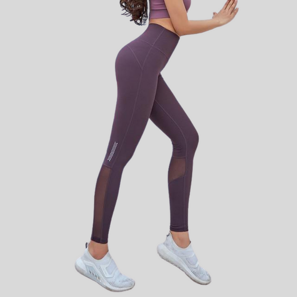 Bri Mesh High Waist Leggings