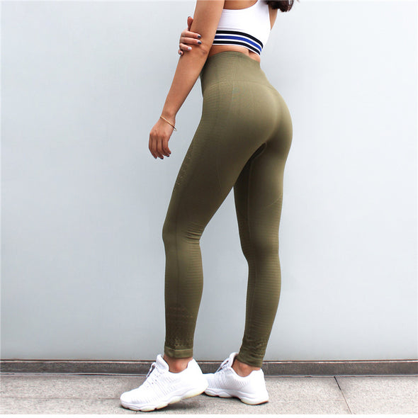 Cierra High Waist Seamless Leggings