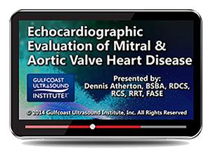 Gulfcoast Echocardiographic Evaluation of Mitral & Aortic Valve Heart Disease (Videos+PDFs) | Medical Video Courses.