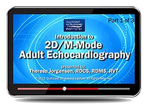 Gulfcoast Introduction to 2D/M-Mode Adult Echocardiography (Videos+PDFs) | Medical Video Courses.