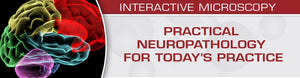 USCAP Practical Neuropathology for Today's Practice | Medical Video Courses.