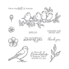 Load image into Gallery viewer, Bird Flower Silicone Clear Stamp Rubber Seal Metal Cutting Dies for DIY Scrapbooking Decoration Thanksgiving Card Making