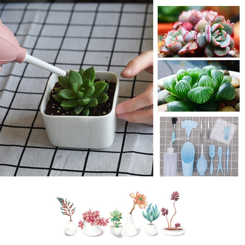 1 Set of succulent transplanting tools combination of flower packaging Mini gardening supplies potted meat tools