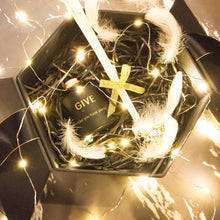 Load image into Gallery viewer, Menlida 3M/5M/10M/20M Gorgeous 30/50/100/200 LED Home Decorations LED String Lights Starry Lights