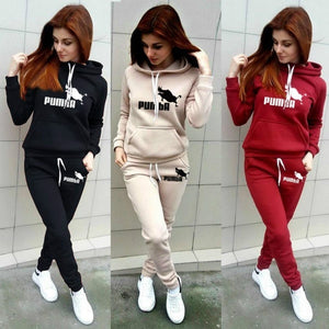 2 Pcs Hoodie Set Pants Clothing Set Warmer Clothes Tracksuit Hoodie+pants Running Clothing