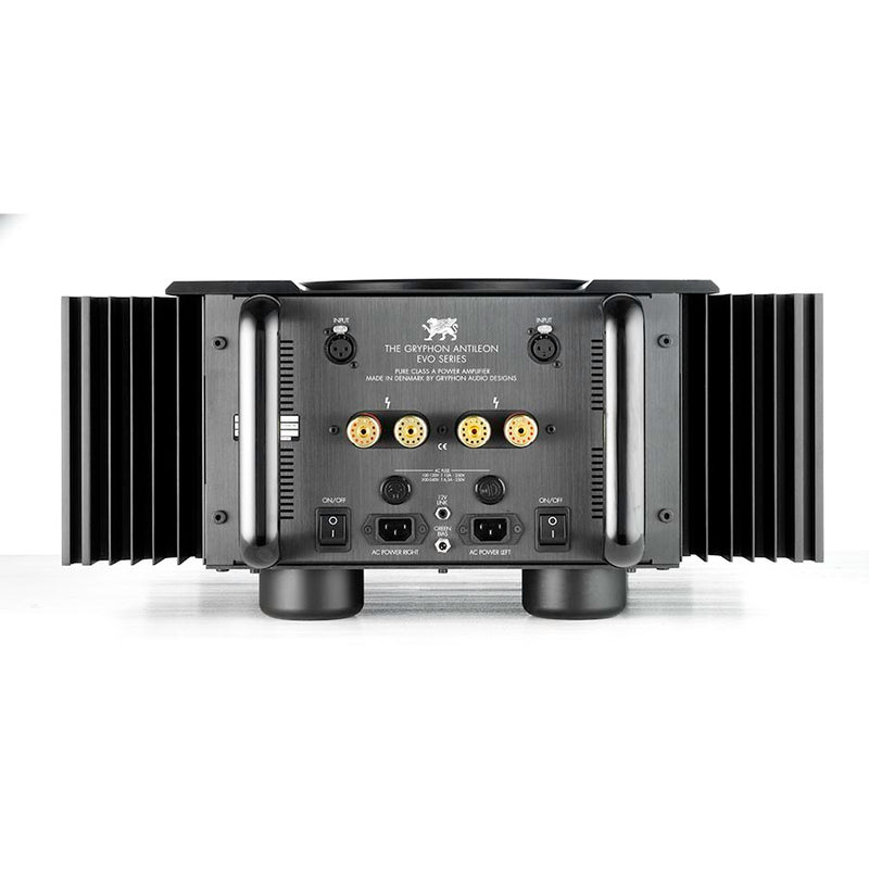 Antileon EVO Stereo / Mono Power Amplifier