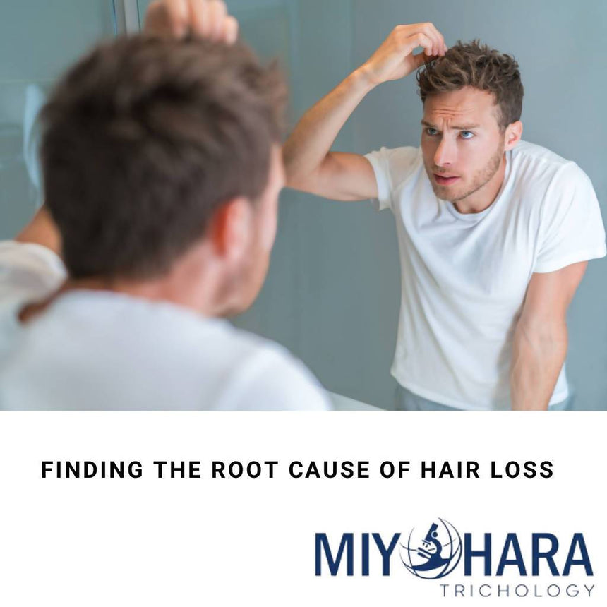 Consultation/Microscopic Hair & Scalp Analysis for finding out the root cause of your hair loss. Trichologist , restoration to treat hair loss and scalp disorders. Miyohara Trichology