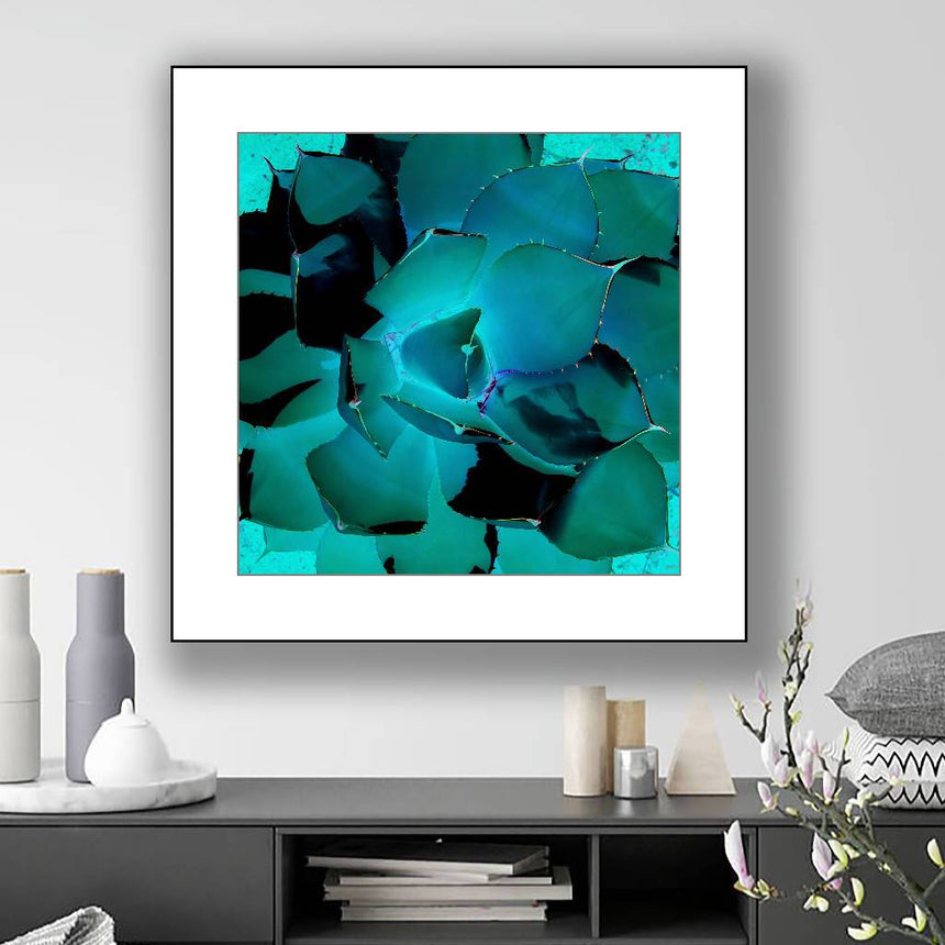Blue Agave, print with white mat, 16x16 inch. Home Delphine B Photography