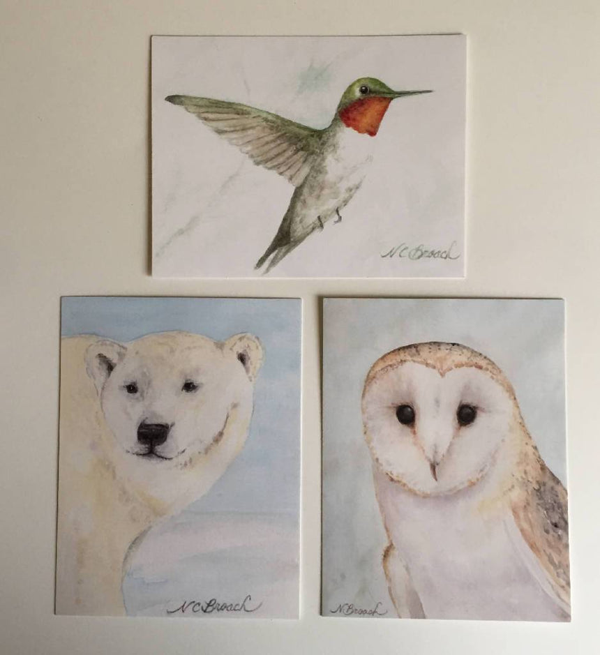 Set of 6 Art Print Postcards with Envelopes Art Stationery Wild Art Watercolors